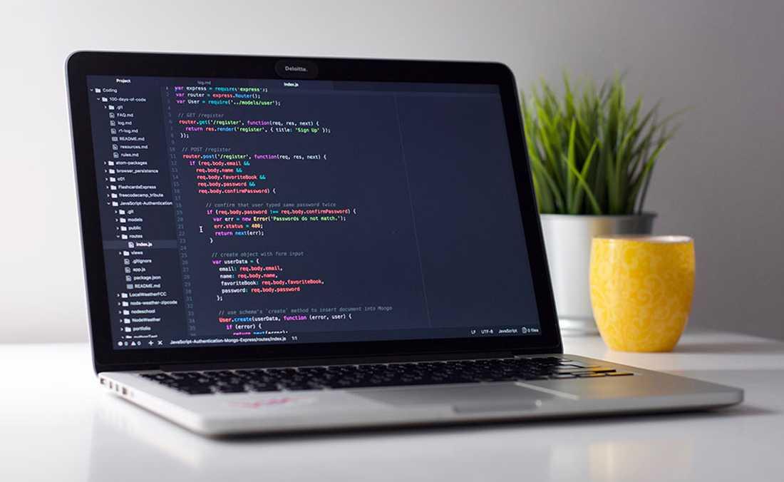Web Tasarım Hizmetleri